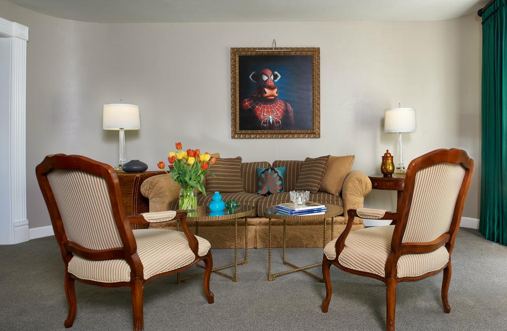Denver luxury living room